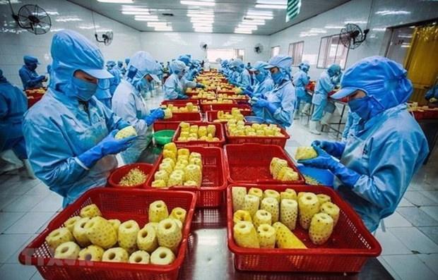 蔬果企业充分利用各项贸易协定的优惠待遇 hinh anh 1