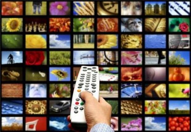 为海外越南人提供网络广播电视服务 hinh anh 1