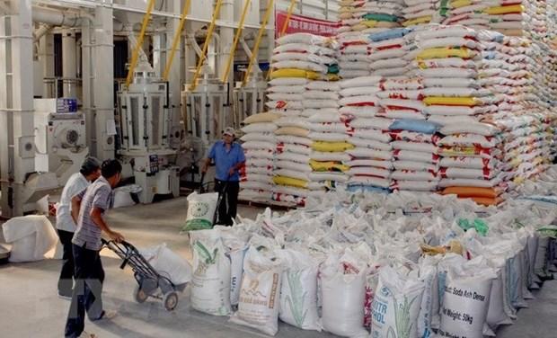 越南农产品和食品日益受到中国企业和消费者的青睐 hinh anh 1