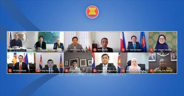 东盟—挪威跨行业联合合作委员会第六次会议以视频形式举行 hinh anh 1