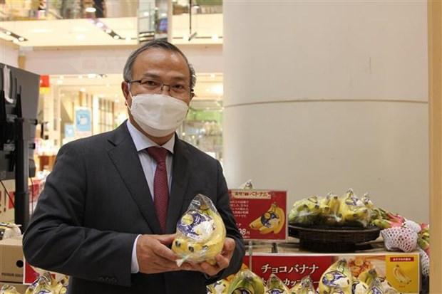 越南香蕉开始在日本市场站稳脚跟 hinh anh 1