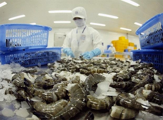 2021年越南虾类出口额有望达38-40亿美元 hinh anh 1