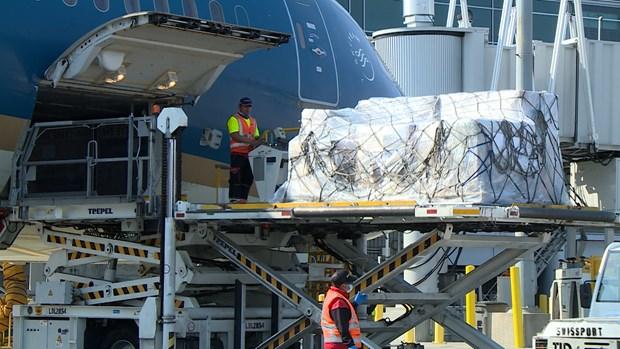 超过6.2吨医疗物资首次从美国直达越南 hinh anh 1