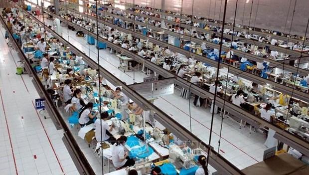 越美两国建立可持续的公平贸易关系 hinh anh 1