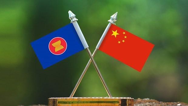 东盟—中国青年主播创造营在广西开营 hinh anh 1