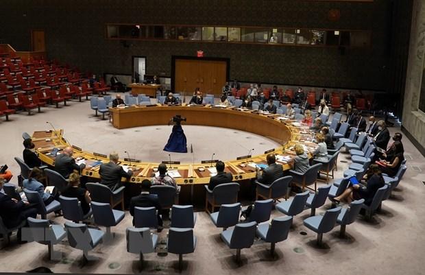 越南与联合国安理会:联合国安理会完成八月议程 hinh anh 1