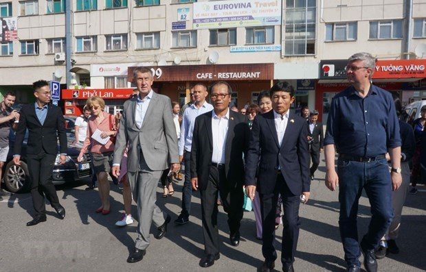 捷克总理高度评价捷越关系和旅捷越南人社群的地位 hinh anh 1