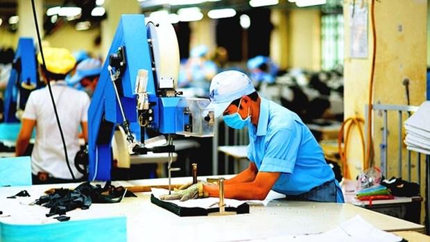 生产和出口活动可能尽快恢复 hinh anh 1