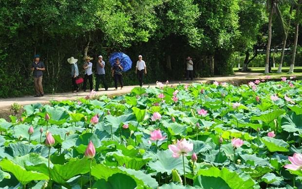 乂安省助推社区旅游有效发展 hinh anh 2