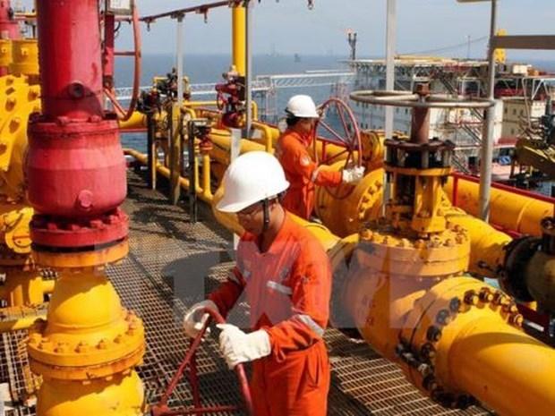 2020年前5月越南石油开采量达899万吨 hinh anh 1