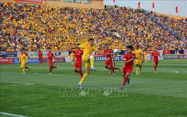 外媒发表文章高度评价越南足球甲级联赛重启 上万球迷坐满球场 hinh anh 1