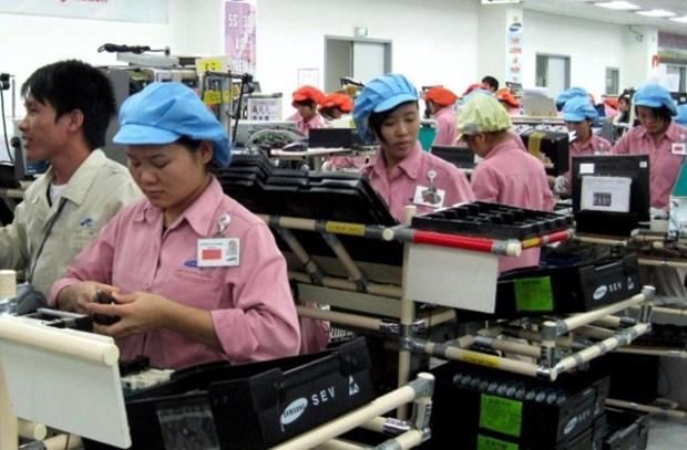 新冠肺炎疫情:今年第三季度越南劳务市场出现积极转变 hinh anh 1