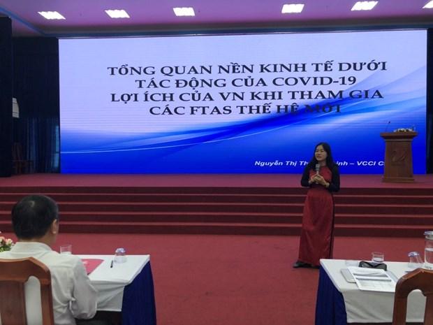 金瓯省寻找措施来有效实施EVFTA和 EVIPA hinh anh 2