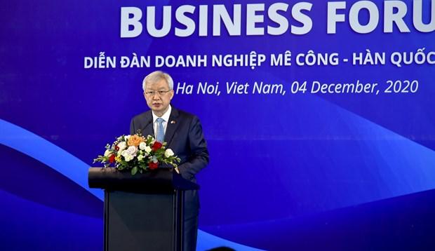 湄公河国家与韩国的合作对促进区域经济一体化发挥重要作用 hinh anh 3