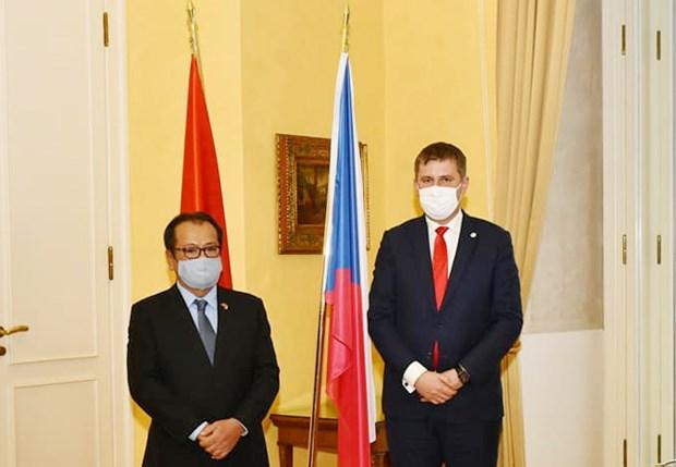 越南与捷克推动传统友谊与全面合作提质升级 hinh anh 1