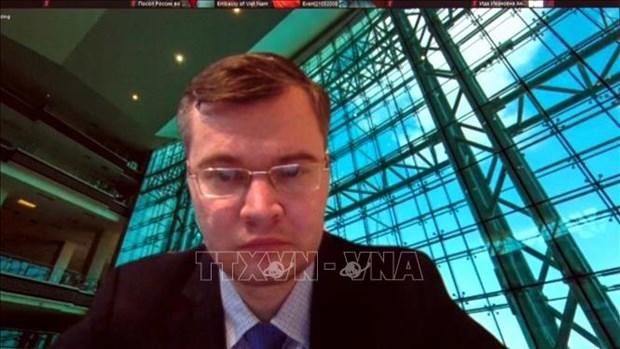 迎接党的十三:关于越南作用的国际研讨会在俄罗斯举行 hinh anh 2