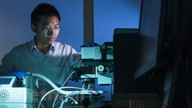 澳大利亚向越裔博士研究小组的新代太阳能电池板技术开发项目提供援助 hinh anh 1