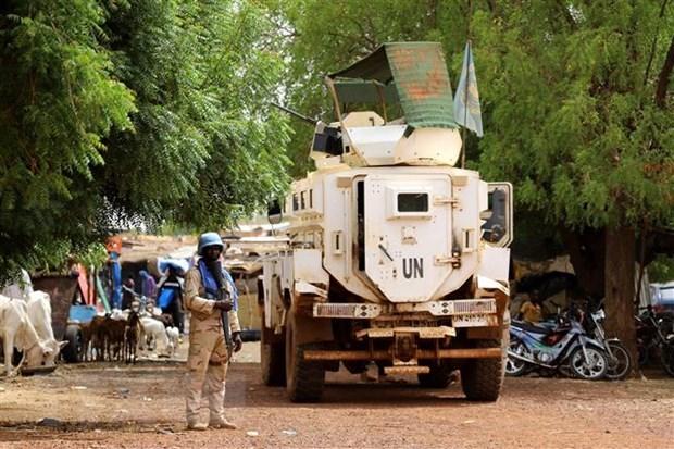 越南与联合国安理会:越南强调了保护人民 以全面综合方式解决马里问题 hinh anh 1