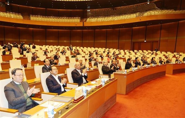 阮富仲:精心部署 确保国会代表和各级人民议会代表换届选举顺利举行 hinh anh 2