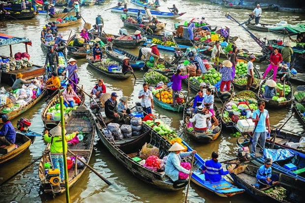 丐冷水上集市成为芹苴市乃至九龙江三角洲的特色旅游景点 hinh anh 1