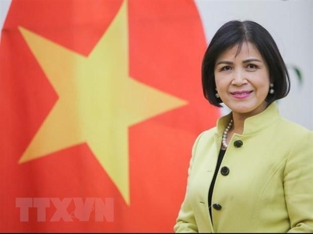 越南支持南方中心在深化发展中国家合作中的重要作用 hinh anh 1