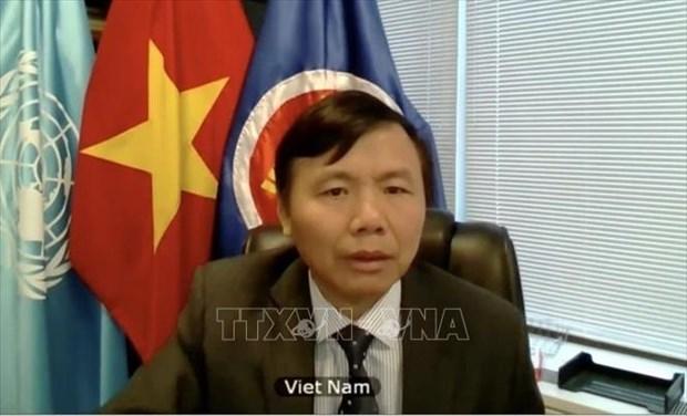 越南出席安理会关于国际法上使用武力和正当自卫权问题的视频会议 hinh anh 1