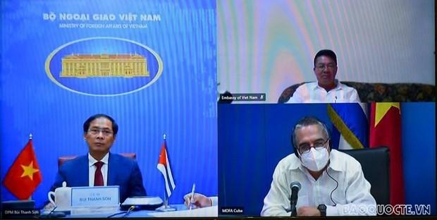 第六次越南-古巴外交部副部长级政治磋商召开 hinh anh 2