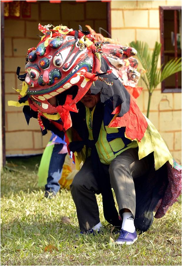 猫狮子舞——谅山省的国家非物质文化遗产 hinh anh 2