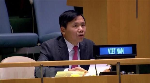 越南高度评价并支持南苏丹特派团的活动 hinh anh 1