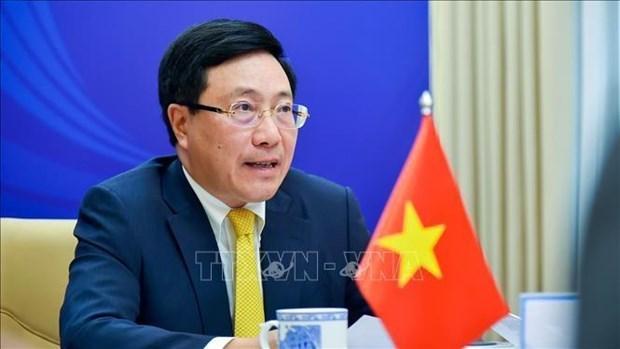 东盟外长非正式会议:越南与各国携手击退疫情 hinh anh 1