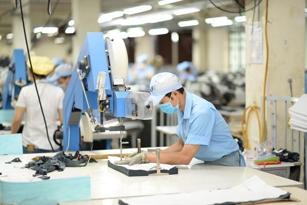 越南纺织服装企业加速回暖 hinh anh 1