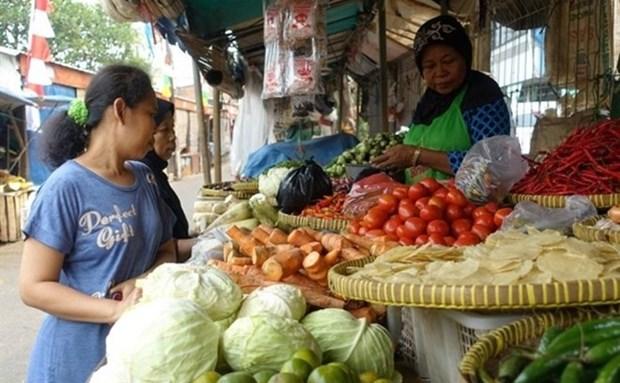 2021年2月印尼贸易顺差20亿美元 hinh anh 1
