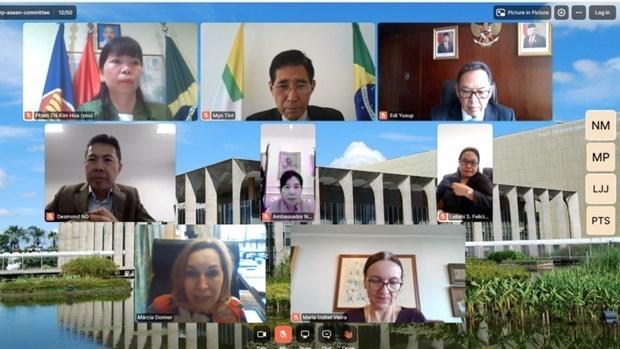 巴西高度评价东盟各国在亚太地区中的中心作用 hinh anh 1