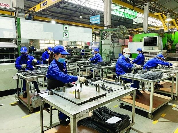 辅助工业企业对2021年增长充满信心 hinh anh 1
