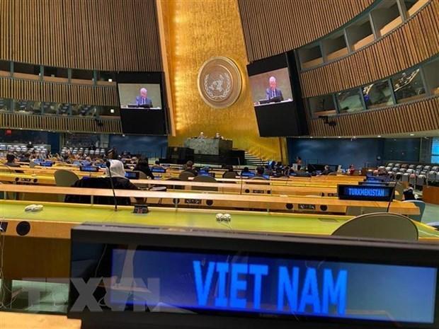 越南与联合国安理会:凸显越南在联合国安理会的作用和地位 hinh anh 1