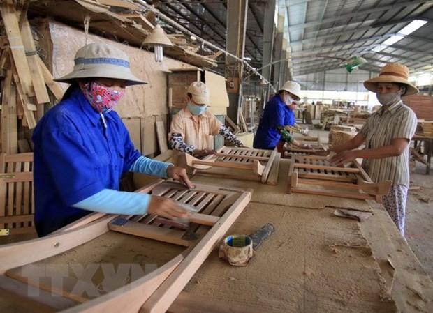 越南有望加大对法国市场出口木材力度 hinh anh 1
