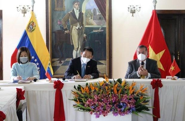 寻找机会 促进越南与委内瑞拉各地之间的合作 hinh anh 1