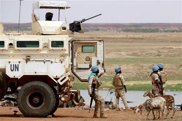 越南与联合国安理会:越南呼吁有关各方为推进马里和平进程作出更大的努力 hinh anh 1