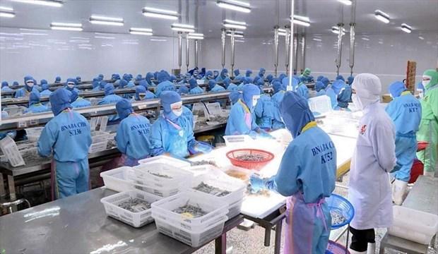 出口到欧盟的越南货物享受EVFTA的优惠税率 hinh anh 1