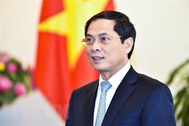 外交部部长裴青山与澳大利亚、马来西亚和菲律宾三国外长举行线上会谈 hinh anh 1