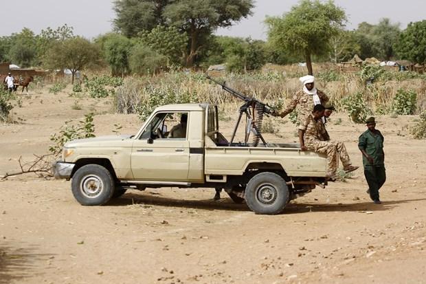 联合国安理会就达尔富尔地区紧张局势开展非正式互动对话 hinh anh 1