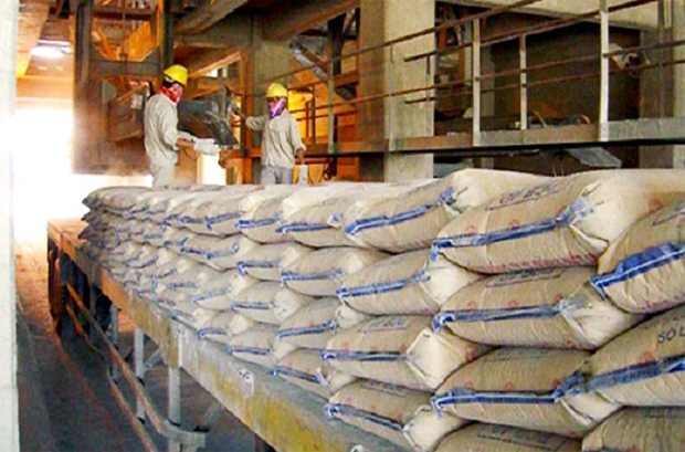 越南部分建材产品投资力度已接近2025年目标 hinh anh 1