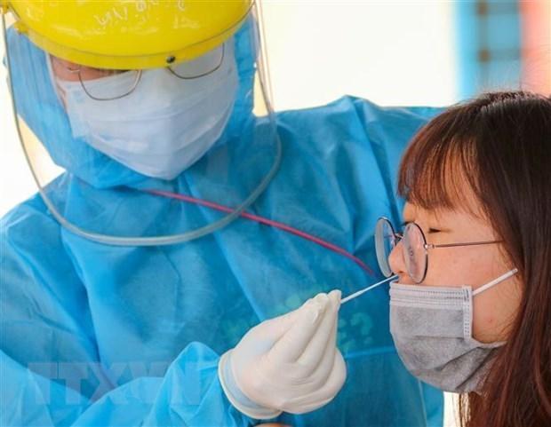 5月17日中午越南新增28例本地新冠肺炎确诊病例 hinh anh 1