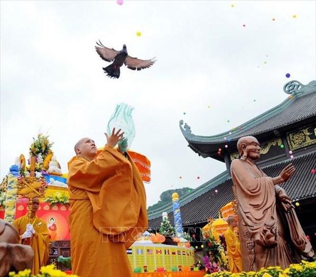 越南祖国阵线中央委员会主席向佛教界致佛诞节贺信 hinh anh 1