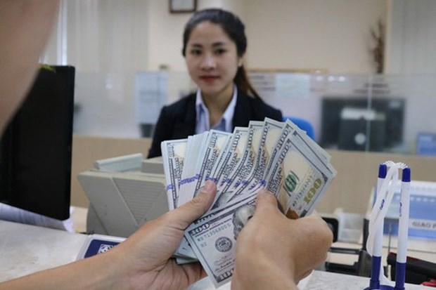 越南继续跻身全球十大侨汇收入国 hinh anh 1