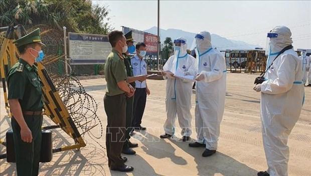 越南考虑将无劳务许可证的外籍劳工驱逐出境 hinh anh 1