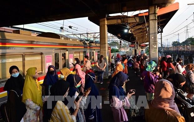 印度尼西亚暂停发放外籍员工工作许可证 hinh anh 1
