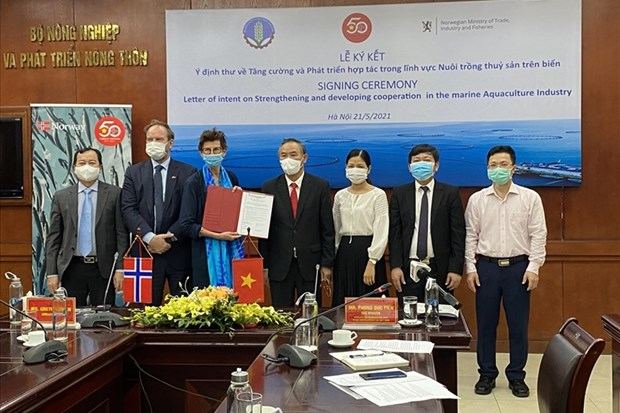 越南与挪威互相分享海水产业化养殖发展的经验 hinh anh 1