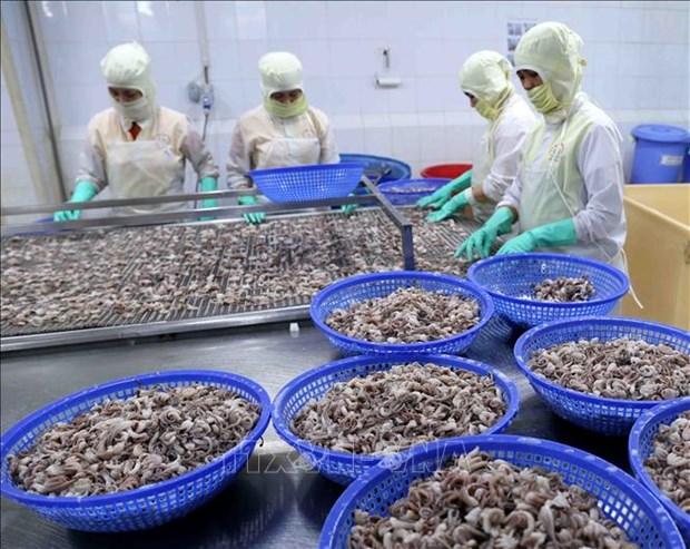 今年前5个月坚江省出口额同比增长近16% hinh anh 1