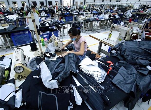 越南工贸部建议企业主动制定向欧亚经济联盟出口计划 hinh anh 1